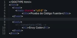 Fuente Envy Code